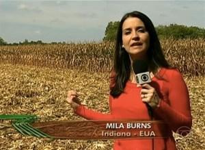 Globo Rural – Reportagem sobre a colheita de milho nos Estados Unidos  exibida em 14/10/2013